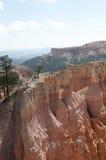 Деревья на каньоне Bryce Hoodoos ландшафт пустыни Стоковое Изображение RF