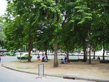 Деревья на песке, острове движения, с отдыхать людей Стоковое Изображение