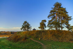 Деревья на холме Стоковое фото RF