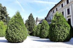 Деревья около дома Стоковое Изображение RF