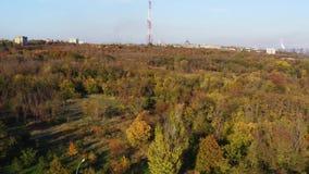Деревья осени в общественном парке mariupol сток-видео