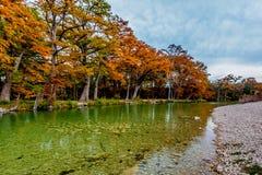 Деревья осени на реке Frio на парке штата запасати, Техасе стоковые изображения rf