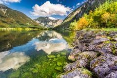 Деревья осени около озера горы в Альпах Стоковые Изображения RF