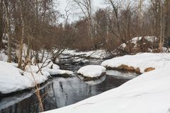 Деревья отражены в реке стоковая фотография rf