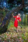 Деревья парка падения девушки Стоковое Фото