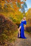 Деревья парка падения девушки Стоковые Фото