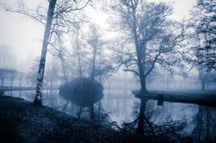 Деревья падения Стоковые Фотографии RF