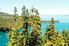 Деревья перед изумрудными заливом и Лаке Таюое стоковое фото rf