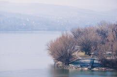 Деревья рекой туманнейшее утро Стоковое фото RF