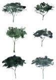 Деревья силуэта акварели Стоковые Фото