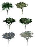 Деревья силуэта акварели Стоковая Фотография RF