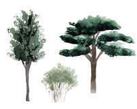 Деревья силуэта акварели Стоковое фото RF