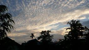 Деревья тени и дома и красивое золотое небо Стоковые Фотографии RF