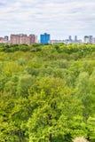 Деревья дуба и березы в лесе и городе лета Стоковое Фото