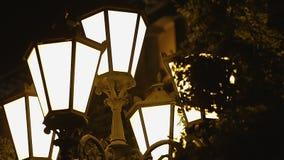 Деревья шуршая около освещенных винтажных фонариков улицы, windstorm на темной ноче сток-видео