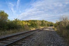 Деревья Autmn за железнодорожными путями Стоковые Фото