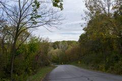 Деревья Autmn на дороге парка Стоковая Фотография RF