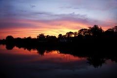 Деревья silhouetted против захода солнца Стоковые Изображения