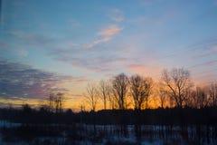 Деревья Silhouetted против оранжевого фиолетового восхода солнца стоковая фотография rf