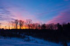 Деревья Silhouetted против фиолетового розового оранжевого восхода солнца стоковое фото rf