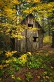 Деревянная лачуга с листопадом стоковое фото rf