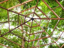 Деревянная верхняя крыша Стоковые Изображения
