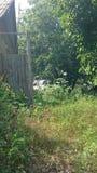 Деревянная дверь в покинутом старом доме Стоковая Фотография RF