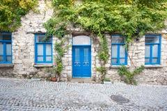 Деревянная дверь и Windows Стоковые Изображения RF