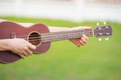 Деревянная гавайская гитара дома Стоковые Фотографии RF