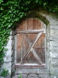 Деревянная дверь с каменной стеной и плющом Стоковое Изображение