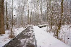 Деревянная дорожка в лесе зимы с деревьями и кустарниками предусматриванными в снеге стоковое фото