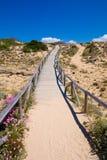 Деревянная дорожка с пляжем песка к верхней части холма стоковая фотография rf