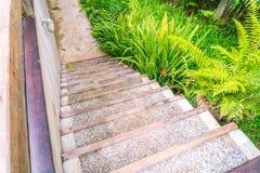 Деревянная лестница в парке Стоковые Изображения RF