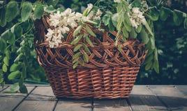 Деревянная живописная корзина и букет весны белых wildflowers Украшения лета праздничные для троицы Стоковое Изображение