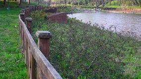 Деревянная загородка на береговой линии озера сток-видео