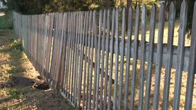 Деревянная загородка на ферме акции видеоматериалы