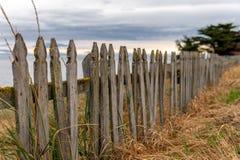 Деревянная загородка с травой стоковые фотографии rf