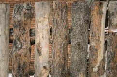 Деревянная загородка тимберса сделанная сосны вносит предпосылку в журнал Стоковые Фотографии RF