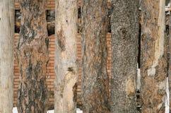 Деревянная загородка тимберса сделанная сосны вносит предпосылку в журнал Стоковые Изображения