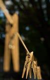 Деревянная зажимка для белья Стоковая Фотография RF