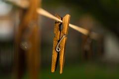 Деревянная зажимка для белья Стоковые Фотографии RF