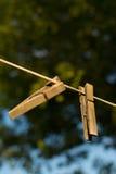 Деревянная зажимка для белья Стоковая Фотография