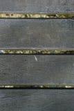 Деревянная задняя земля стоковые изображения rf