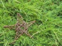 Деревянная звезда в соснах Стоковое Изображение