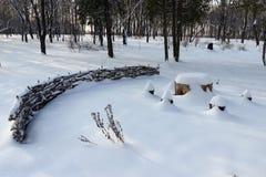 Деревянная зима Стоковая Фотография RF