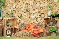 Деревянная зона фото с украшением зеленых растений Стоковые Фотографии RF