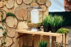 Деревянная зона фото с украшением зеленых растений Стоковые Фото