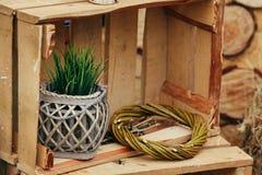 Деревянная зона фото с украшением зеленых растений Стоковая Фотография RF