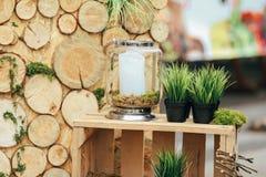 Деревянная зона фото с украшением зеленых растений Стоковое Изображение RF