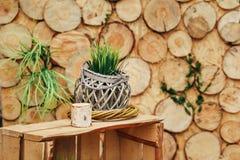 Деревянная зона фото с украшением зеленых растений Стоковые Изображения RF